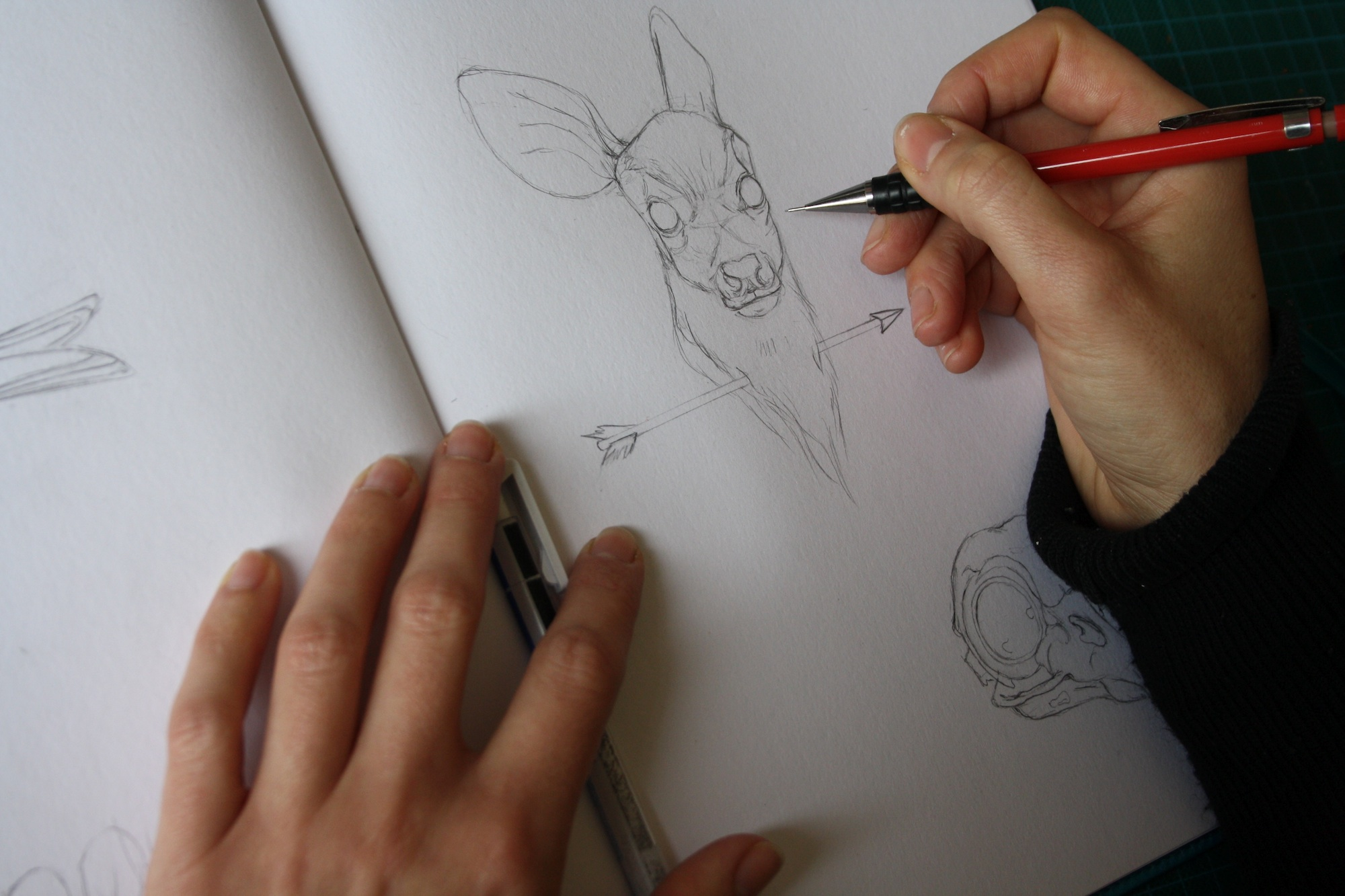 cahier croquis delphine vaute